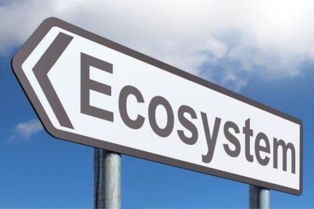 Exploram ecosistemul